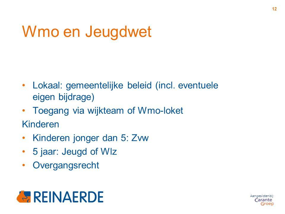Aangesloten bij: Wmo en Jeugdwet Lokaal: gemeentelijke beleid (incl. eventuele eigen bijdrage) Toegang via wijkteam of Wmo-loket Kinderen Kinderen jon