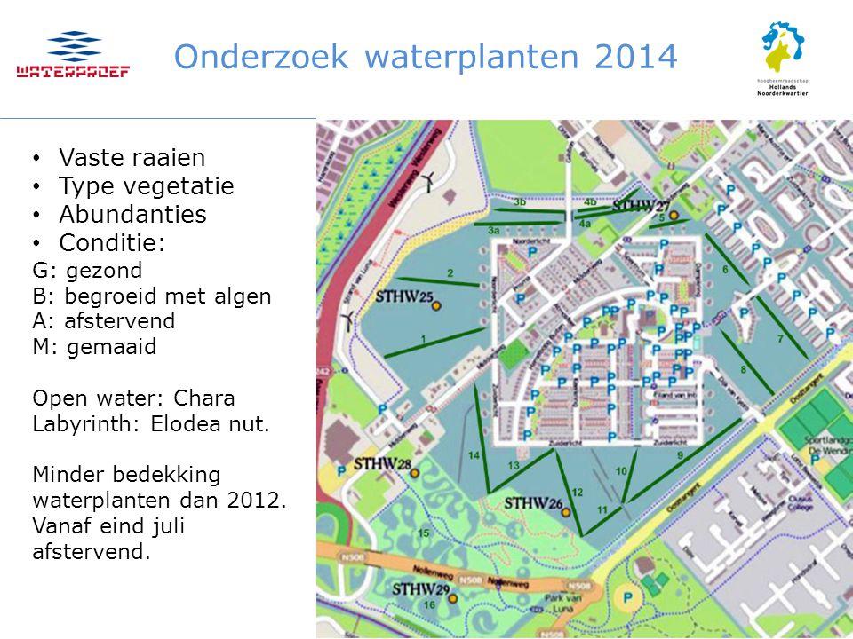 Onderzoek waterplanten 2014 Vaste raaien Type vegetatie Abundanties Conditie: G: gezond B: begroeid met algen A: afstervend M: gemaaid Open water: Cha