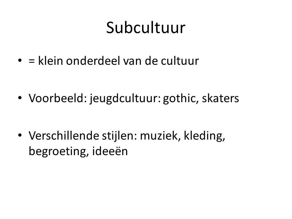 Subcultuur = klein onderdeel van de cultuur Voorbeeld: jeugdcultuur: gothic, skaters Verschillende stijlen: muziek, kleding, begroeting, ideeën
