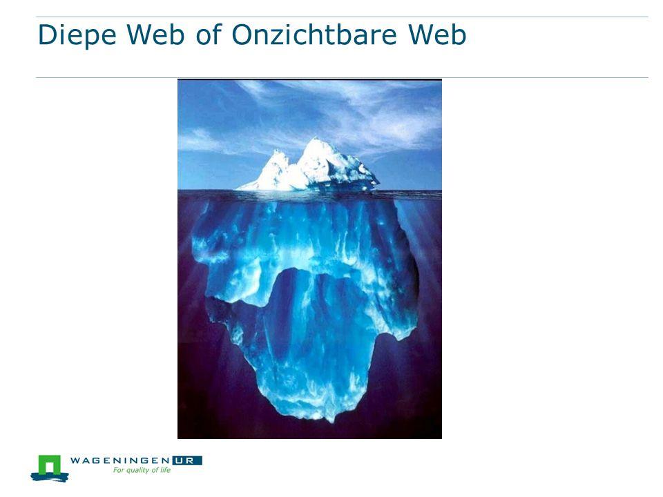 Diepe Web of Onzichtbare Web