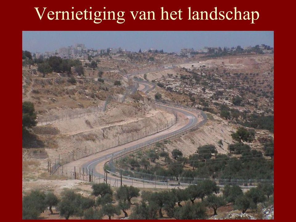 Honderdduizenden bomen vernield voor de bouw van de Muur In 2004 werden 5746 ha grond in beslag genomen 115.364 bomen 2866 huizen verwoest