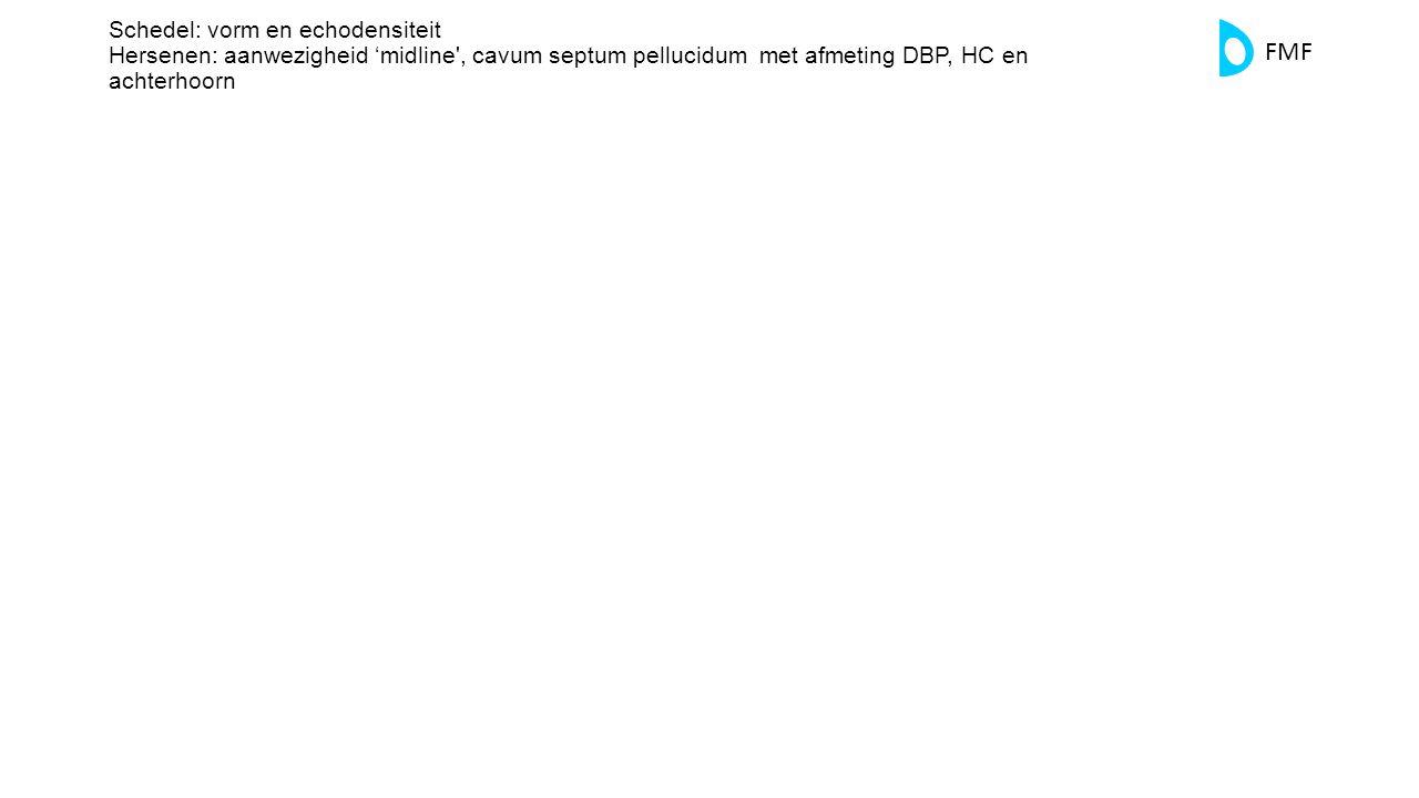 FMF Schedel: vorm en echodensiteit Hersenen: aanwezigheid 'midline', cavum septum pellucidum met afmeting DBP, HC en achterhoorn