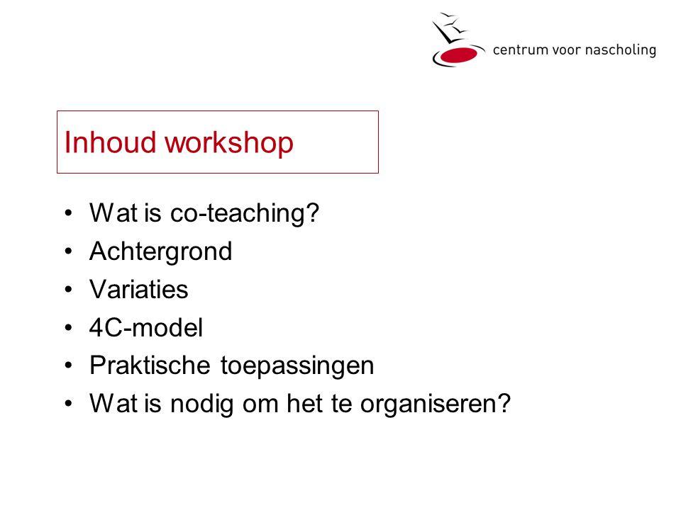 Inhoud workshop Wat is co-teaching.