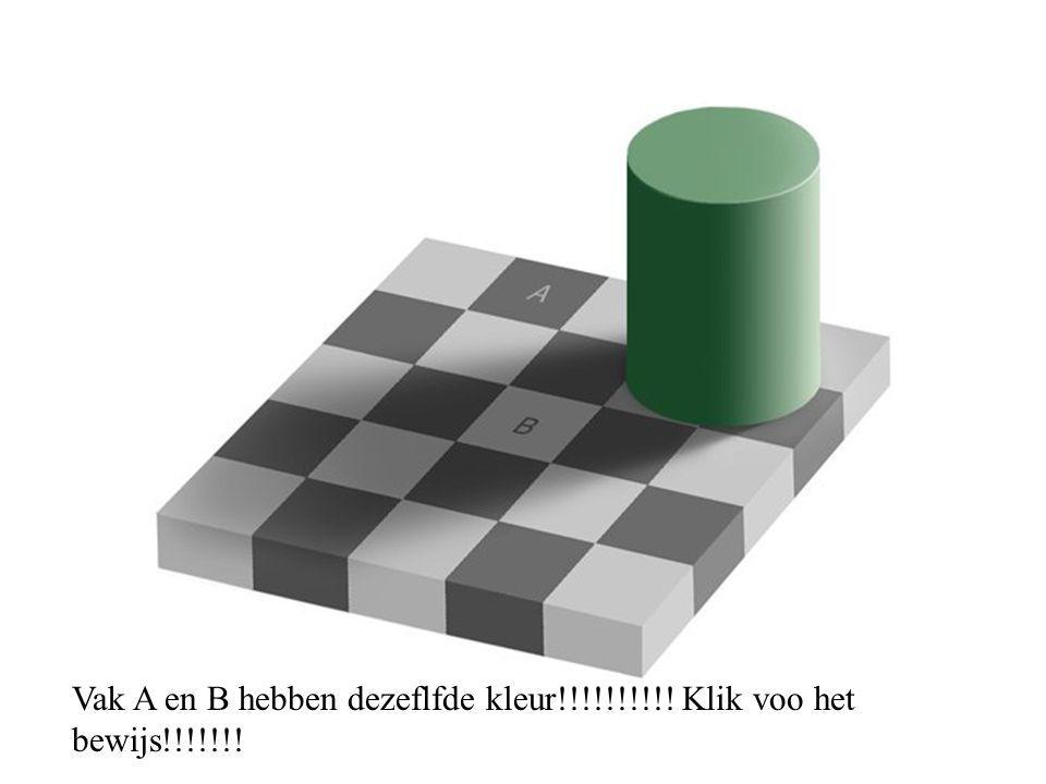 Vak A en B hebben dezeflfde kleur!!!!!!!!!! Klik voo het bewijs!!!!!!!