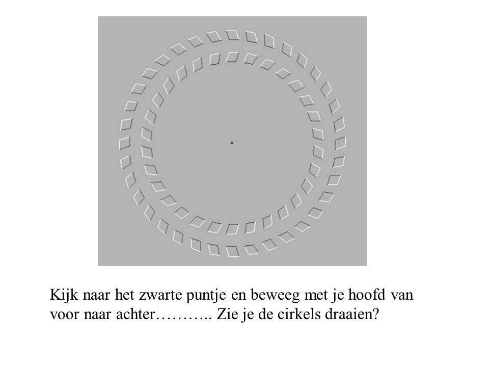 Kijk naar het zwarte puntje en beweeg met je hoofd van voor naar achter……….. Zie je de cirkels draaien?