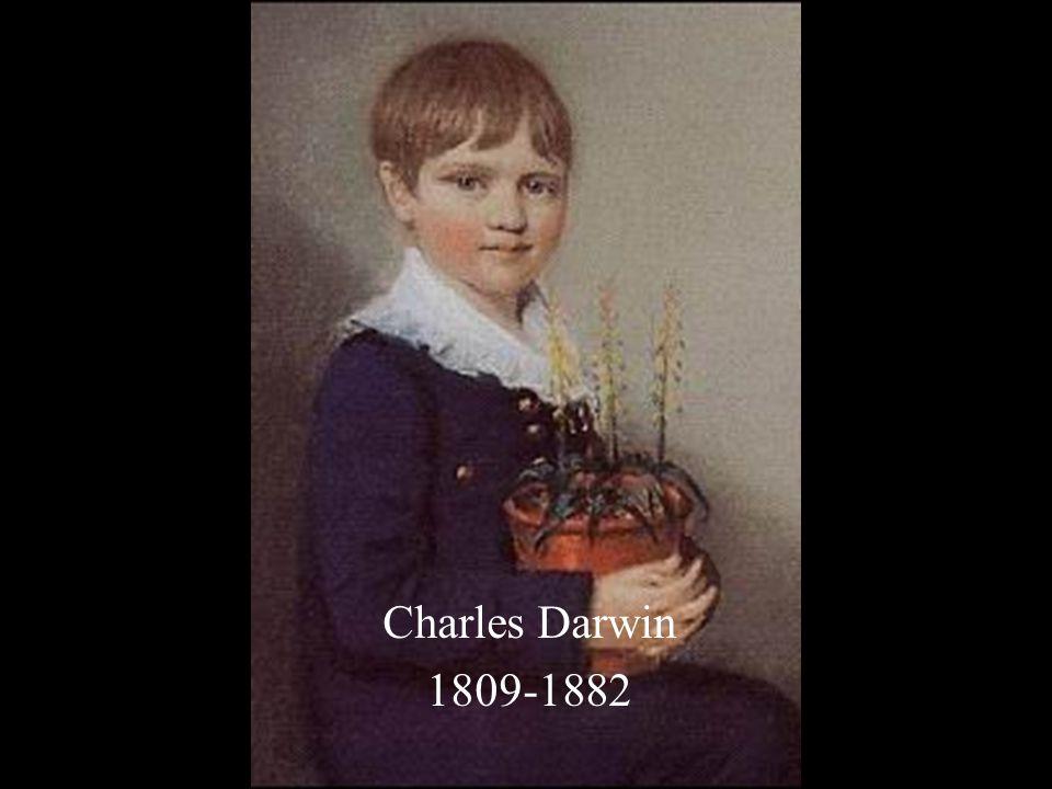 Charles Darwin vijfde kind jongste van twee zonen gedoopt vader: vrijdenker
