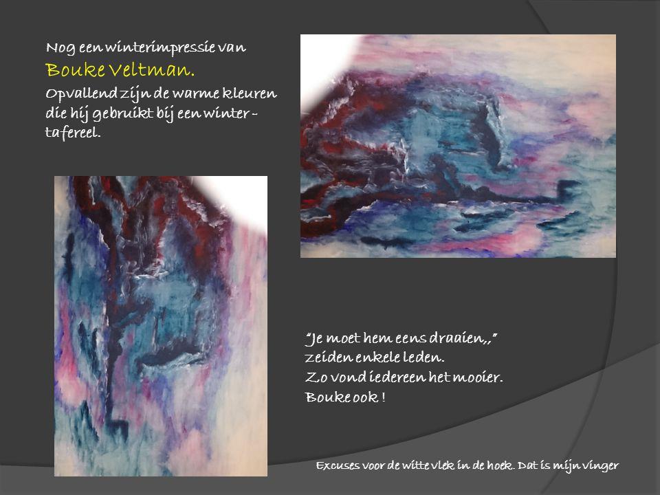 """Nog een winterimpressie van Bouke Veltman. Opvallend zijn de warme kleuren die hij gebruikt bij een winter - tafereel. """"Je moet hem eens draaien,,"""" ze"""
