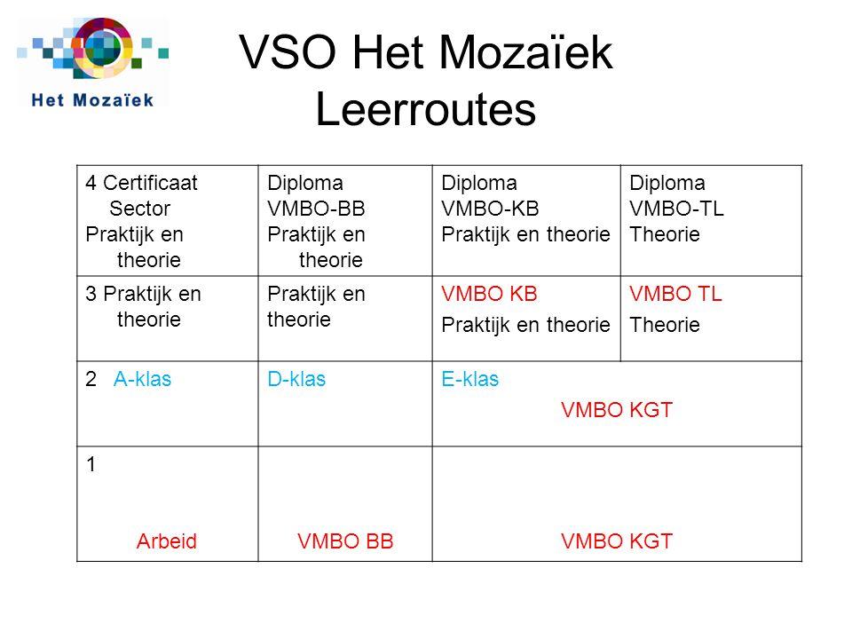 VSO Het Mozaïek Leerroutes 4 Certificaat Sector Praktijk en theorie Diploma VMBO-BB Praktijk en theorie Diploma VMBO-KB Praktijk en theorie Diploma VM