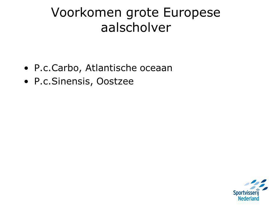 Voorkomen grote Europese aalscholver P.c.Carbo, Atlantische oceaan P.c.Sinensis, Oostzee