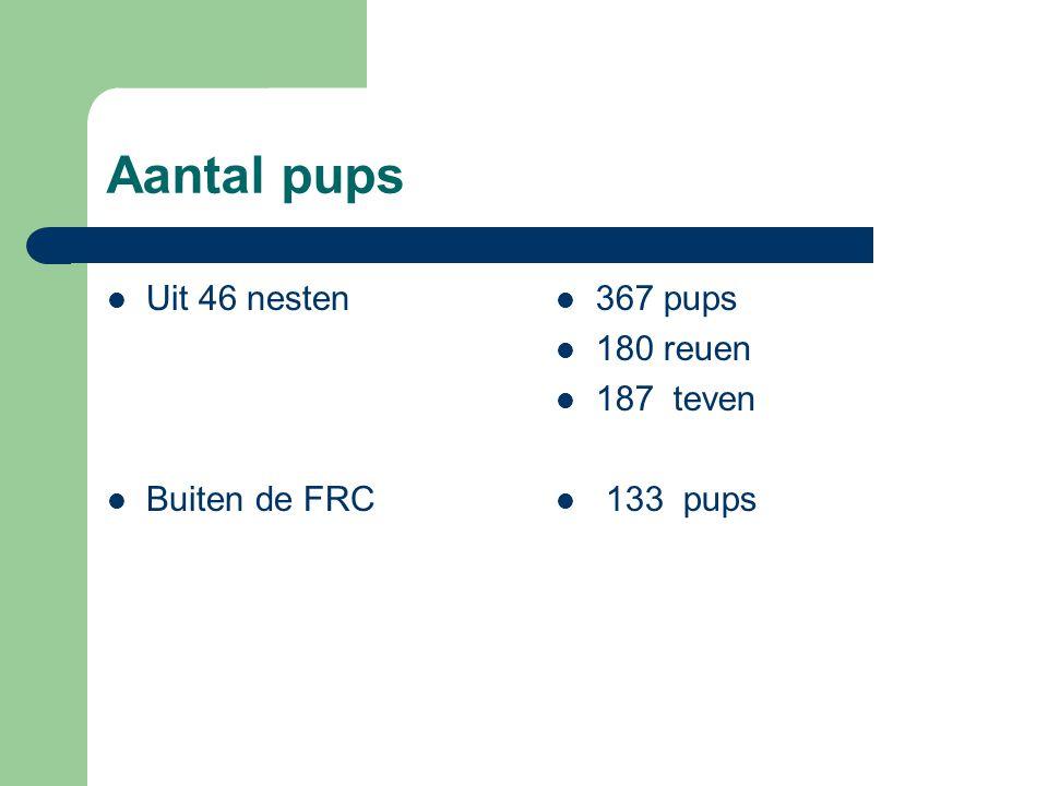 Aantal pups Uit 46 nesten Buiten de FRC 367 pups 180 reuen 187 teven 133 pups