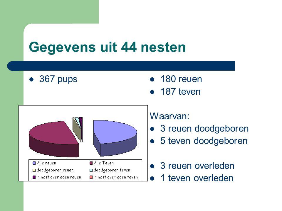 Gegevens uit 44 nesten 367 pups 180 reuen 187 teven Waarvan: 3 reuen doodgeboren 5 teven doodgeboren 3 reuen overleden 1 teven overleden