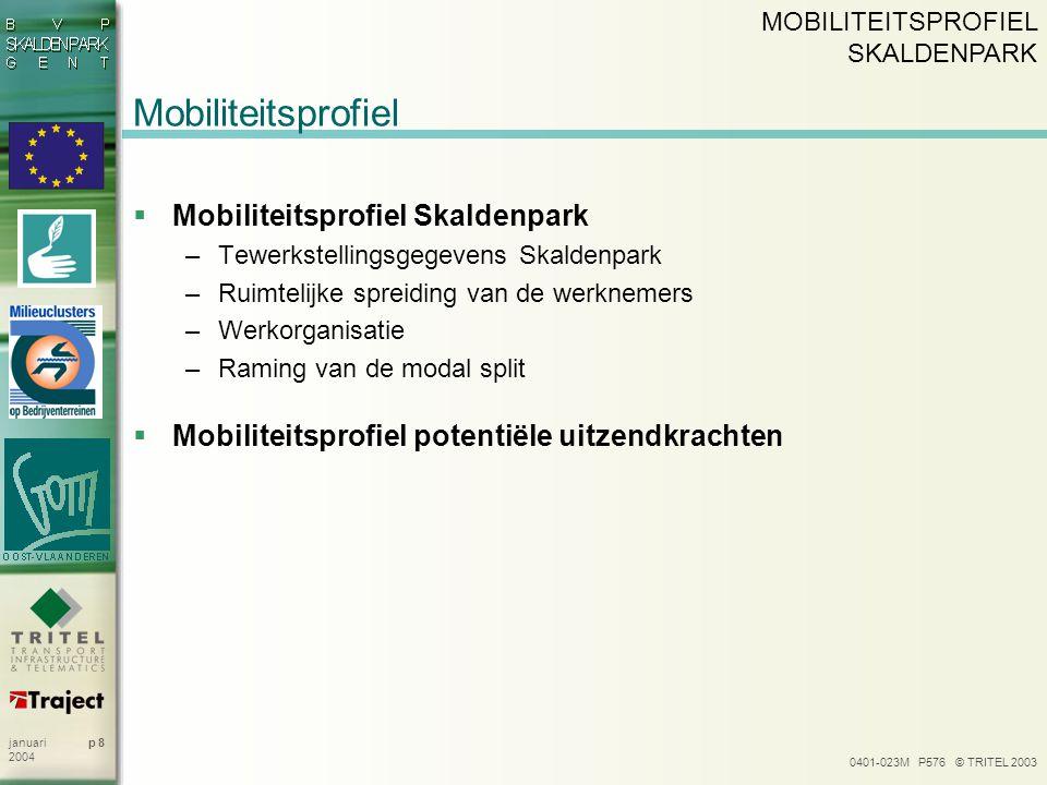 0401-023M P576 © TRITEL 2003 p 8januari 2004 Mobiliteitsprofiel  Mobiliteitsprofiel Skaldenpark –Tewerkstellingsgegevens Skaldenpark –Ruimtelijke spr