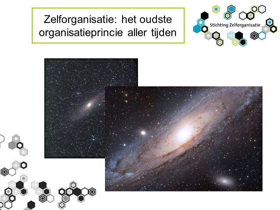 Zelforganisatie: het oudste organisatieprincie aller tijden