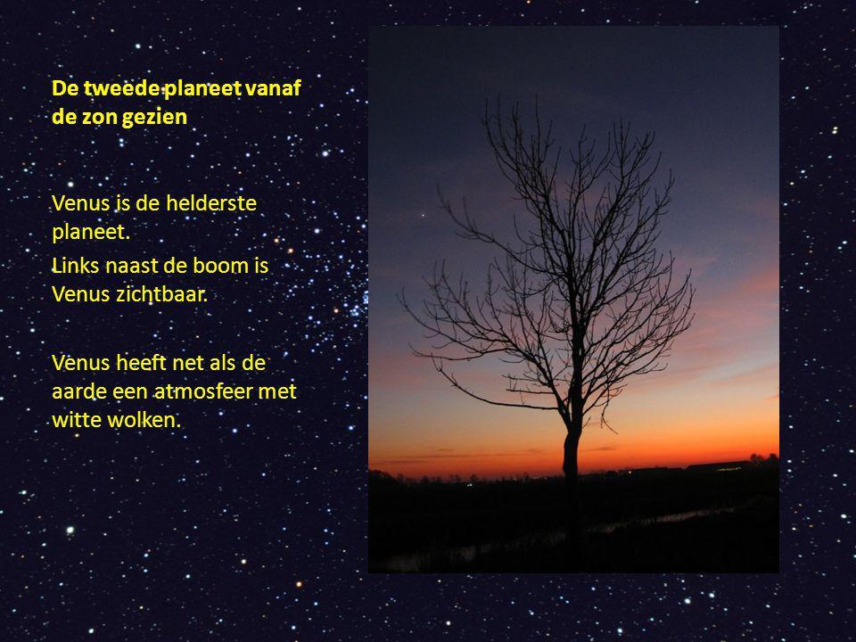 De tweede planeet vanaf de zon gezien Venus is de helderste planeet. Links naast de boom is Venus zichtbaar. Venus heeft net als de aarde een atmosfee