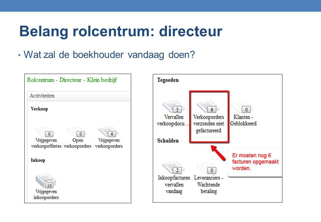 Belang rolcentrum: directeur Wat zal de boekhouder vandaag doen?