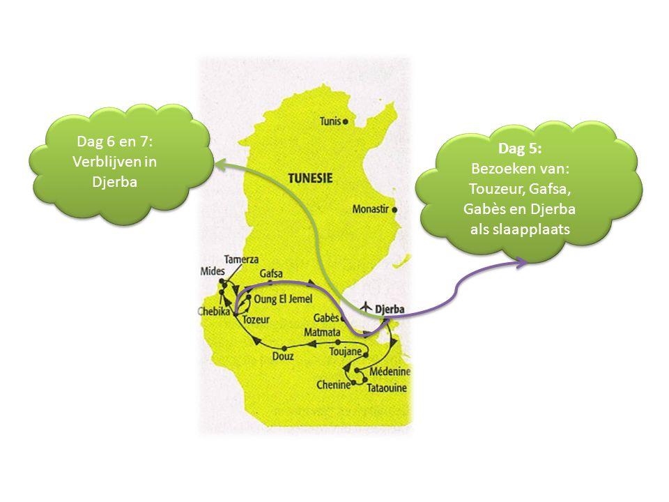 Dag 5: Bezoeken van: Touzeur, Gafsa, Gabès en Djerba als slaapplaats Dag 5: Bezoeken van: Touzeur, Gafsa, Gabès en Djerba als slaapplaats Dag 6 en 7: