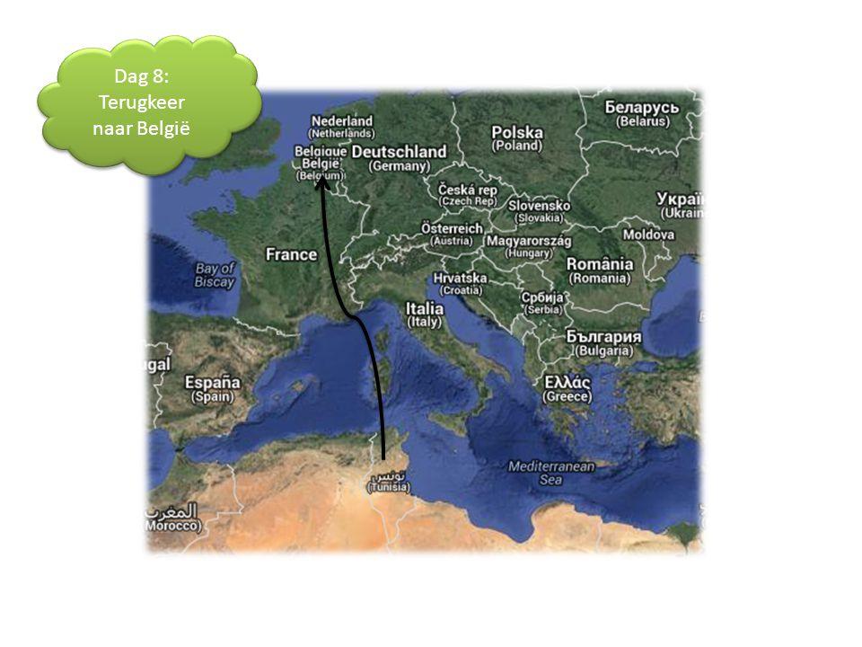 Dag 8: Terugkeer naar België Dag 8: Terugkeer naar België