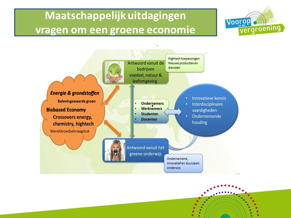Uitgangspunten activiteitenplan VidV '14-'15 (1) Voorop in de Vergroening is een driejarig project dat het vergroeningsproces van de instellingen ondersteunt.