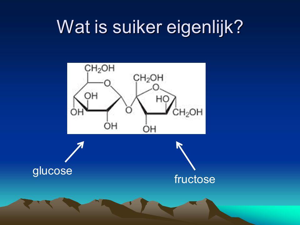 Wat is suiker eigenlijk? glucose fructose