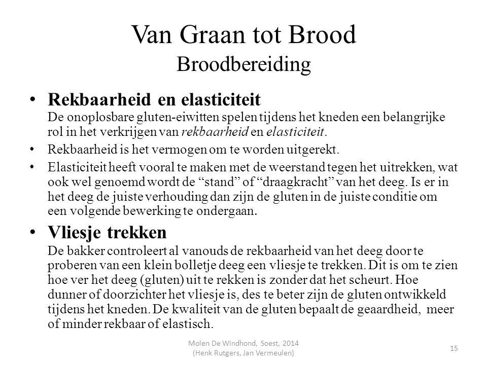 Van Graan tot Brood Broodbereiding Rekbaarheid en elasticiteit De onoplosbare gluten-eiwitten spelen tijdens het kneden een belangrijke rol in het ver