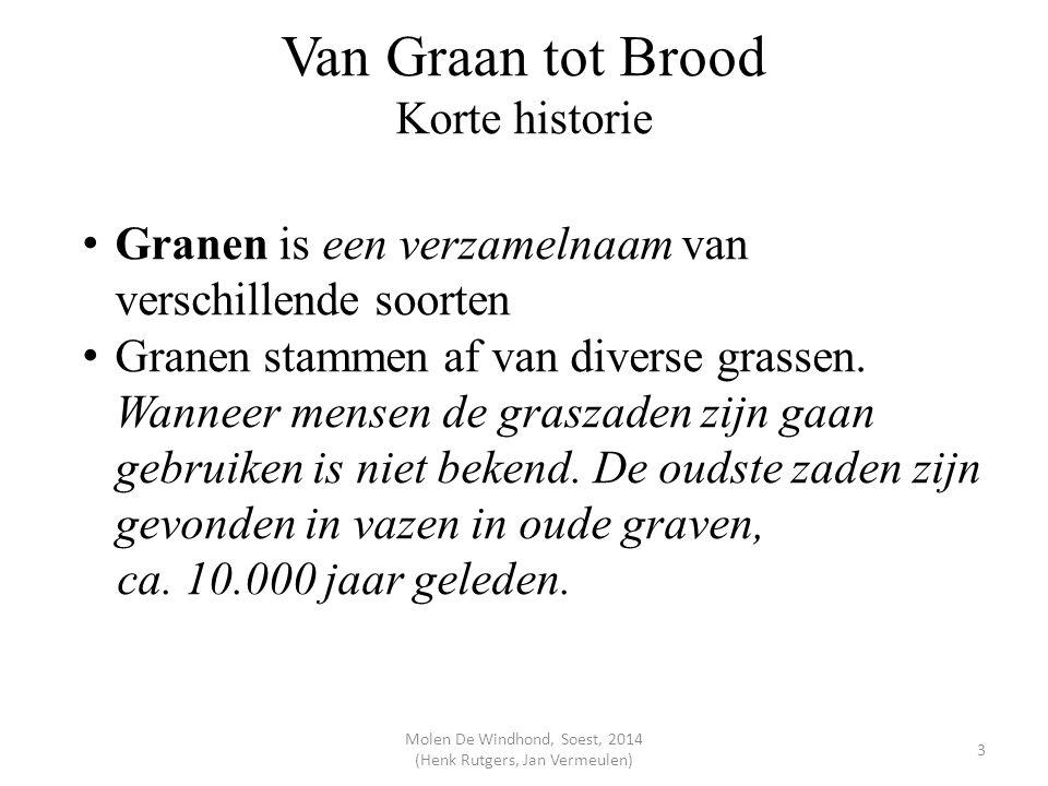 Van Graan tot Brood Korte historie Granen is een verzamelnaam van verschillende soorten Granen stammen af van diverse grassen. Wanneer mensen de grasz