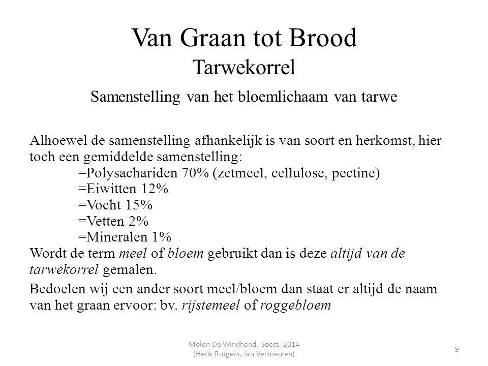 Van Graan tot Brood Tarwekorrel Samenstelling van het bloemlichaam van tarwe Alhoewel de samenstelling afhankelijk is van soort en herkomst, hier toch