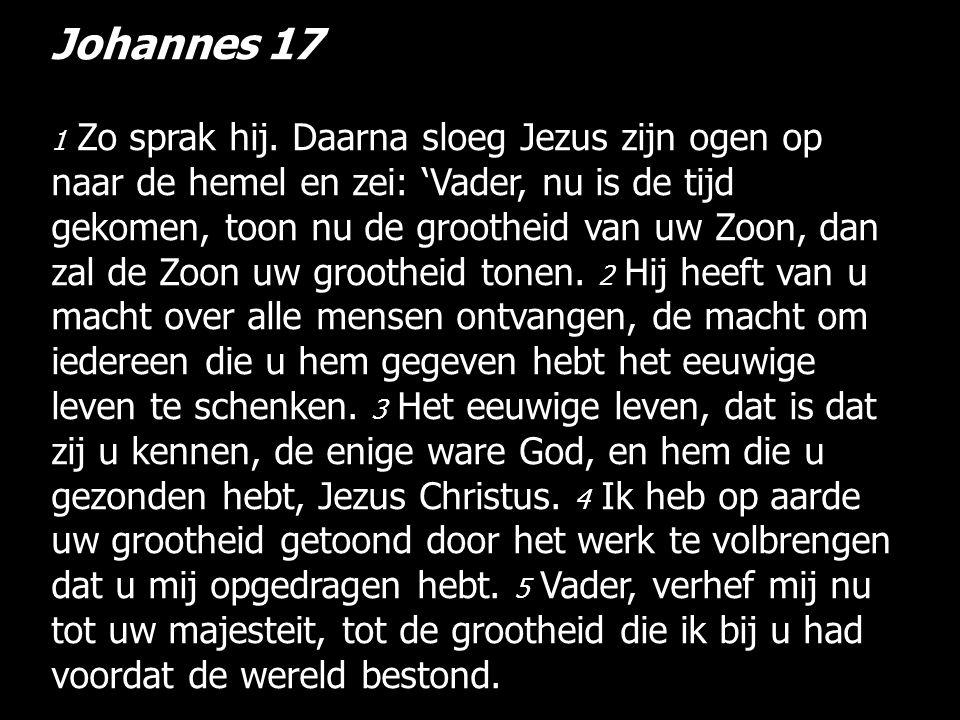 Johannes 17 1 Zo sprak hij.