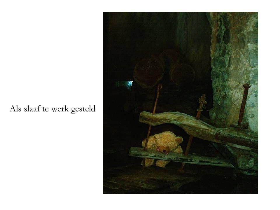 Als slaaf te werk gesteld