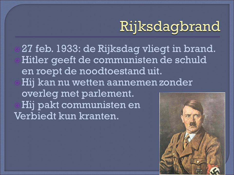  27 feb.1933: de Rijksdag vliegt in brand.