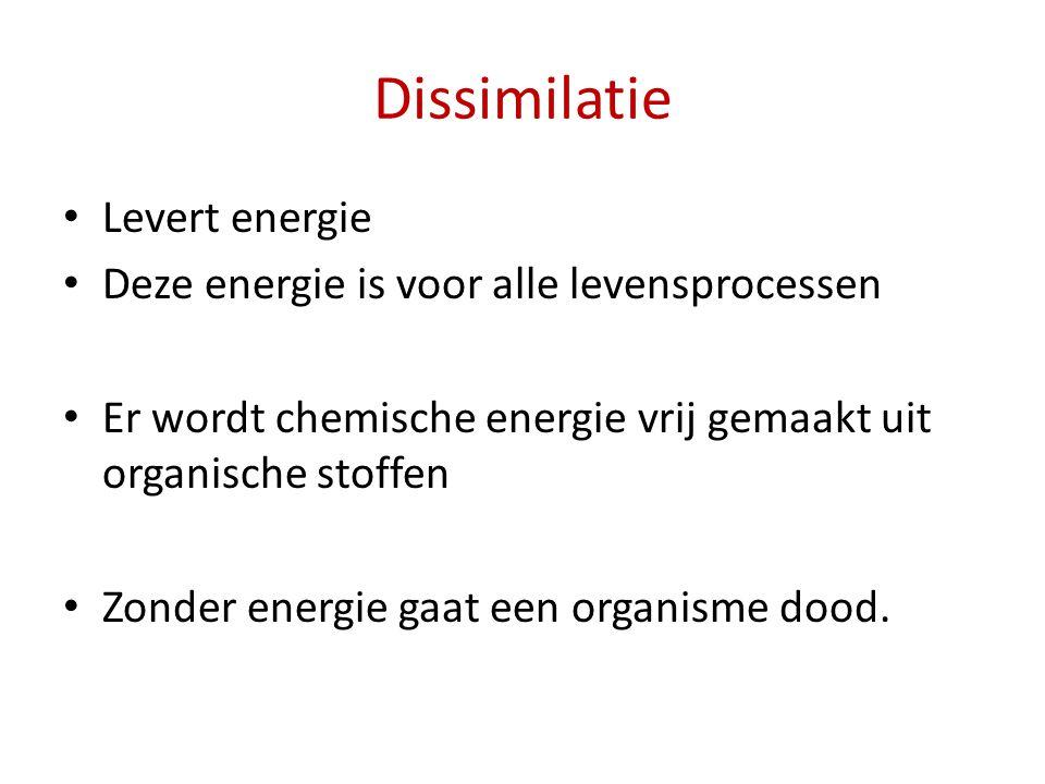 Dissimilatie Levert energie Deze energie is voor alle levensprocessen Er wordt chemische energie vrij gemaakt uit organische stoffen Zonder energie ga