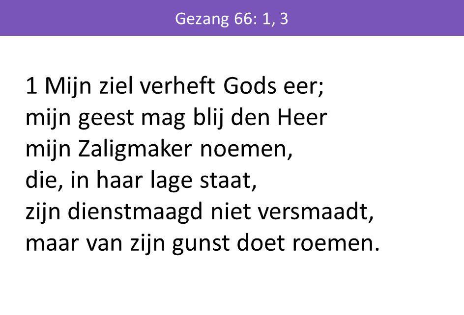 1 Mijn ziel verheft Gods eer; mijn geest mag blij den Heer mijn Zaligmaker noemen, die, in haar lage staat, zijn dienstmaagd niet versmaadt, maar van