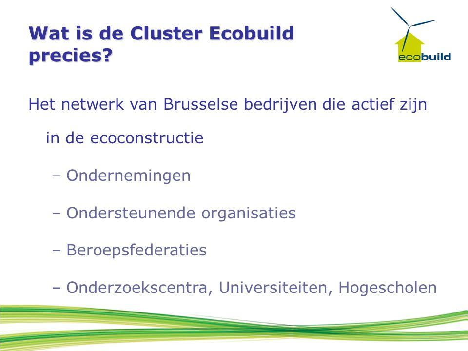 Wat is de Cluster Ecobuild precies? Het netwerk van Brusselse bedrijven die actief zijn in de ecoconstructie –Ondernemingen –Ondersteunende organisati