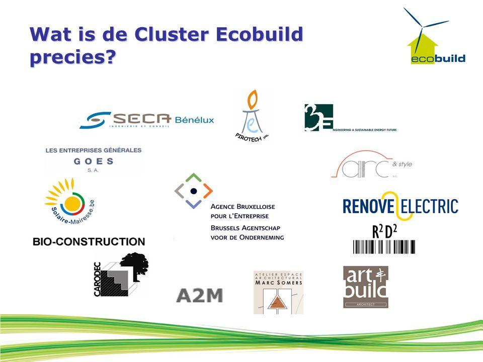 Wat is de Cluster Ecobuild precies?