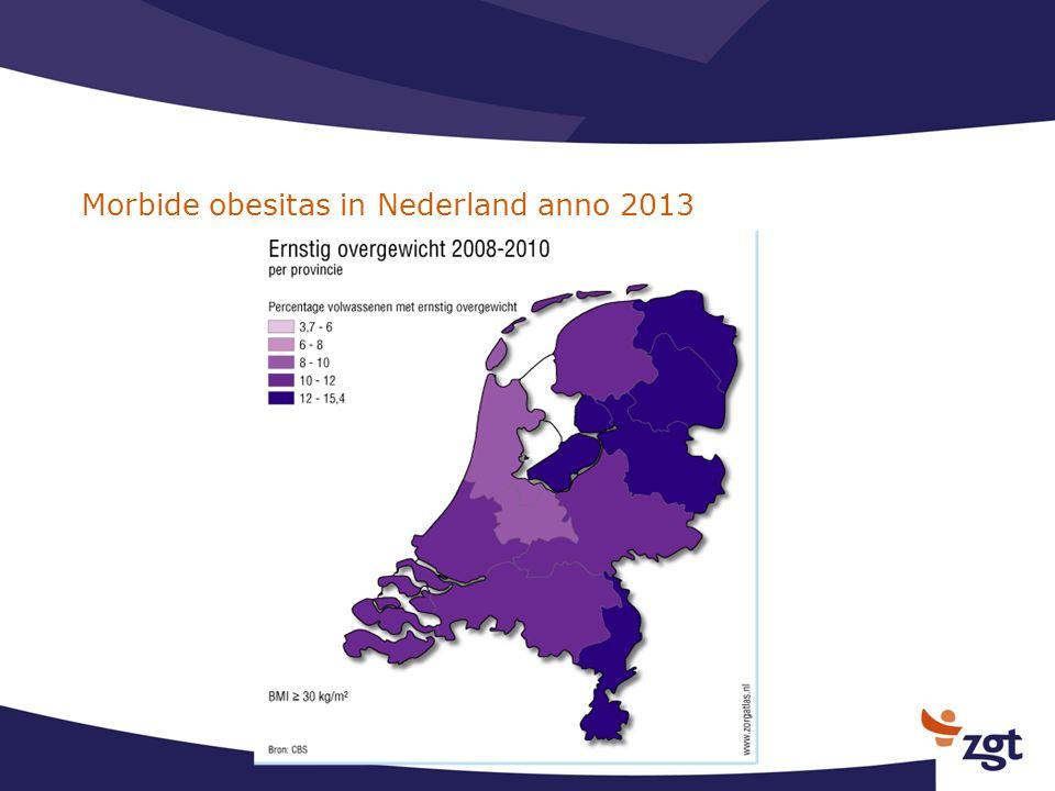 Morbide obesitas in Nederland anno 2013