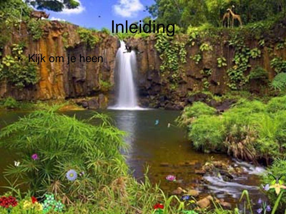 Inleiding De natuur zit ongelooflijk prachtig en ingenieus in elkaar