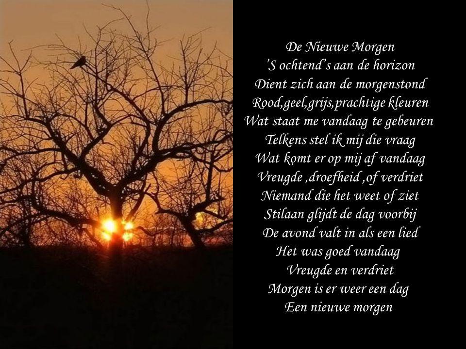 De Nieuwe Morgen 'S ochtend's aan de horizon Dient zich aan de morgenstond Rood,geel,grijs,prachtige kleuren Wat staat me vandaag te gebeuren Telkens stel ik mij die vraag Wat komt er op mij af vandaag Vreugde,droefheid,of verdriet Niemand die het weet of ziet Stilaan glijdt de dag voorbij De avond valt in als een lied Het was goed vandaag Vreugde en verdriet Morgen is er weer een dag Een nieuwe morgen