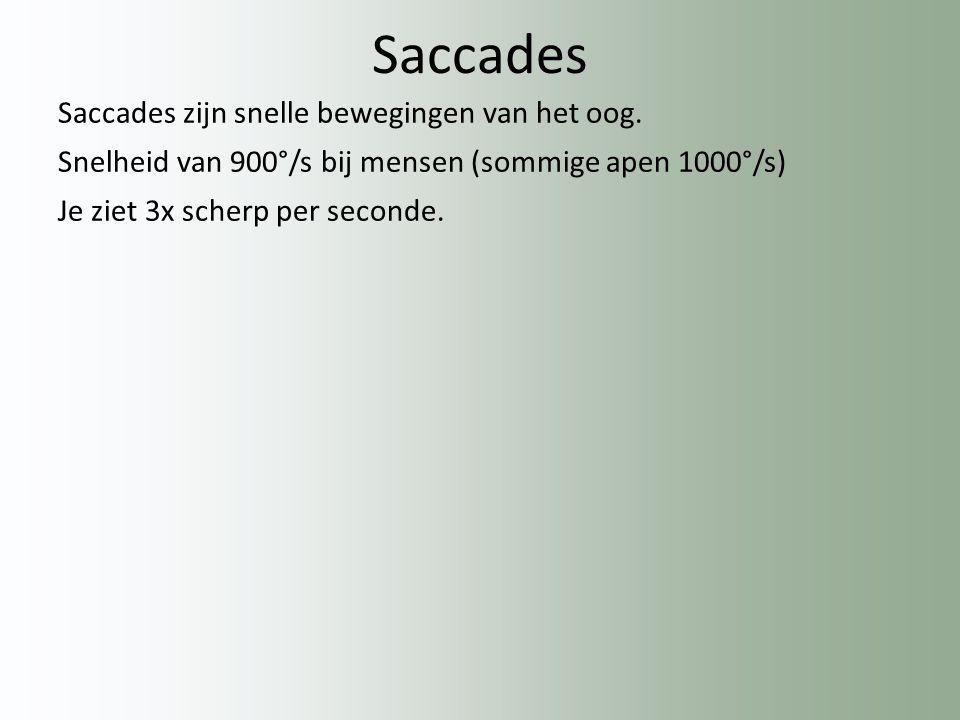 Saccades Saccades zijn snelle bewegingen van het oog.