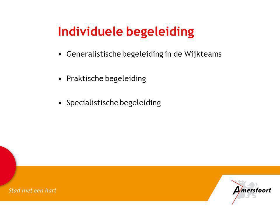 Individuele begeleiding Generalistische begeleiding in de Wijkteams Praktische begeleiding Specialistische begeleiding