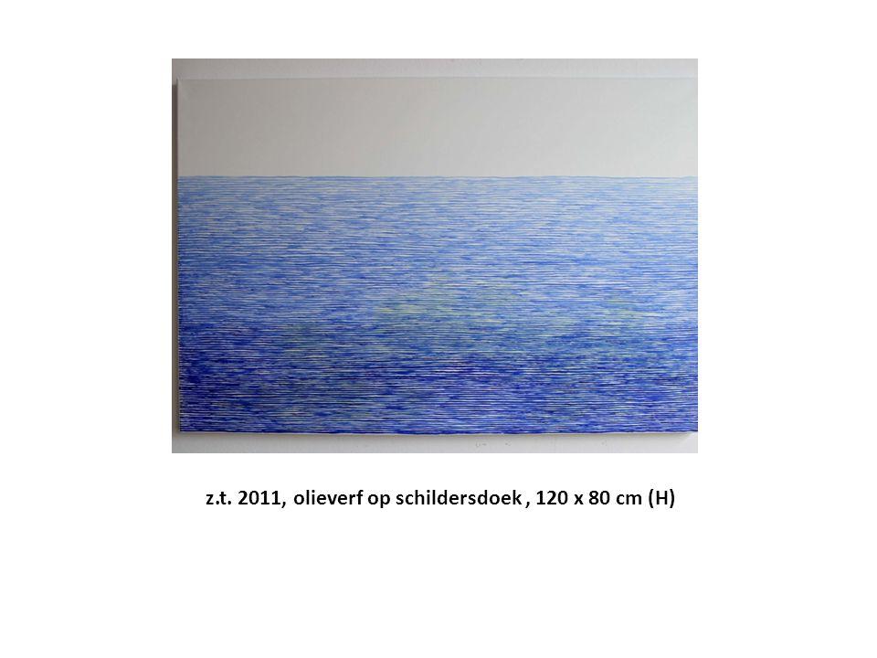 z.t. 2011, olieverf op schildersdoek, 120 x 80 cm (H)