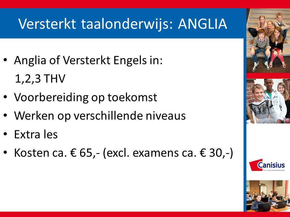 Versterkt taalonderwijs: ANGLIA Anglia of Versterkt Engels in: 1,2,3 THV Voorbereiding op toekomst Werken op verschillende niveaus Extra les Kosten ca