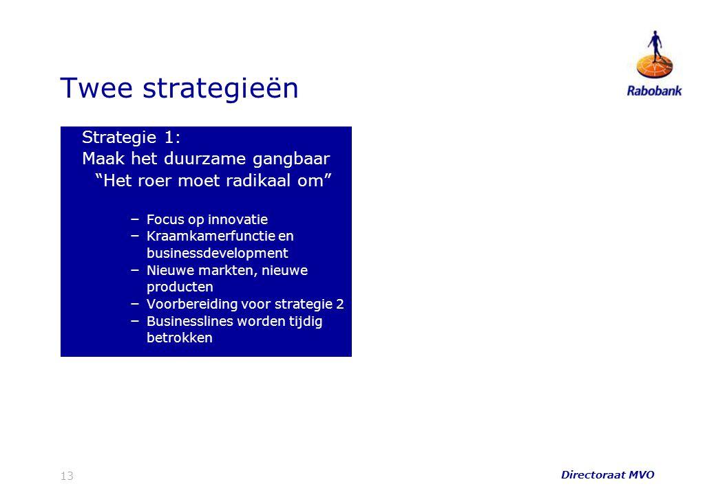 """Twee strategieën Strategie 1: Maak het duurzame gangbaar """"Het roer moet radikaal om"""" – Focus op innovatie – Kraamkamerfunctie en businessdevelopment –"""