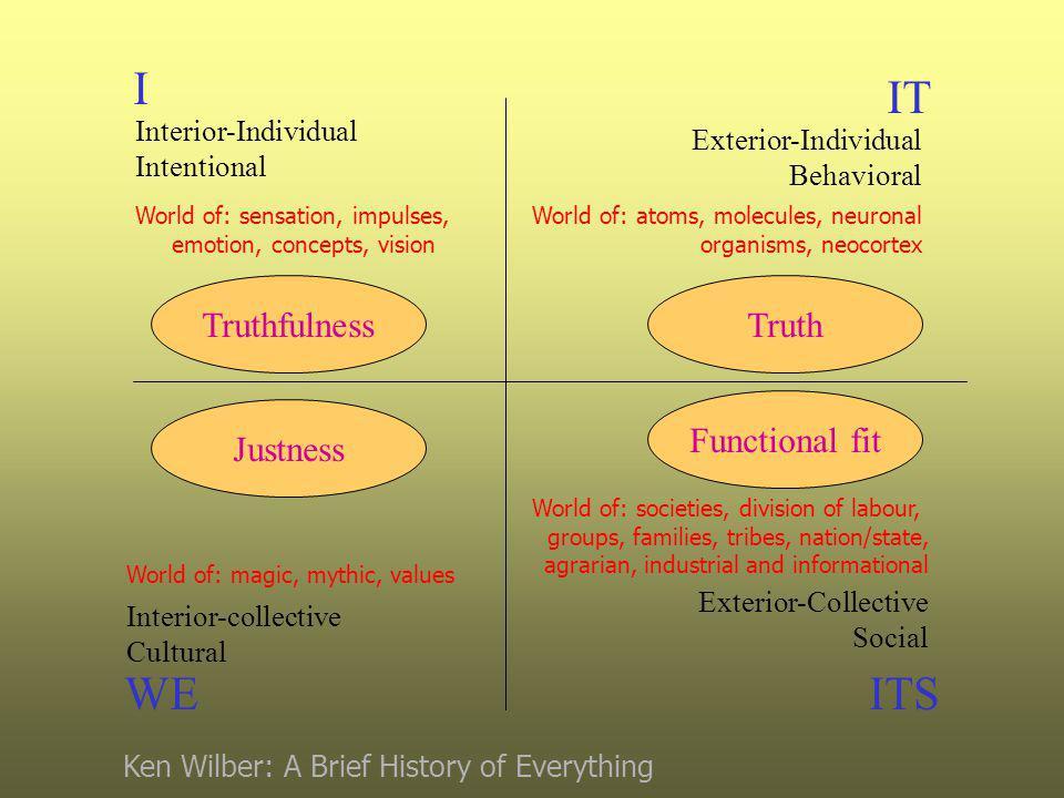 I WE IT ITS Interior-Individual Intentional Interior-collective Cultural Exterior-Individual Behavioral Exterior-Collective Social World of: sensation