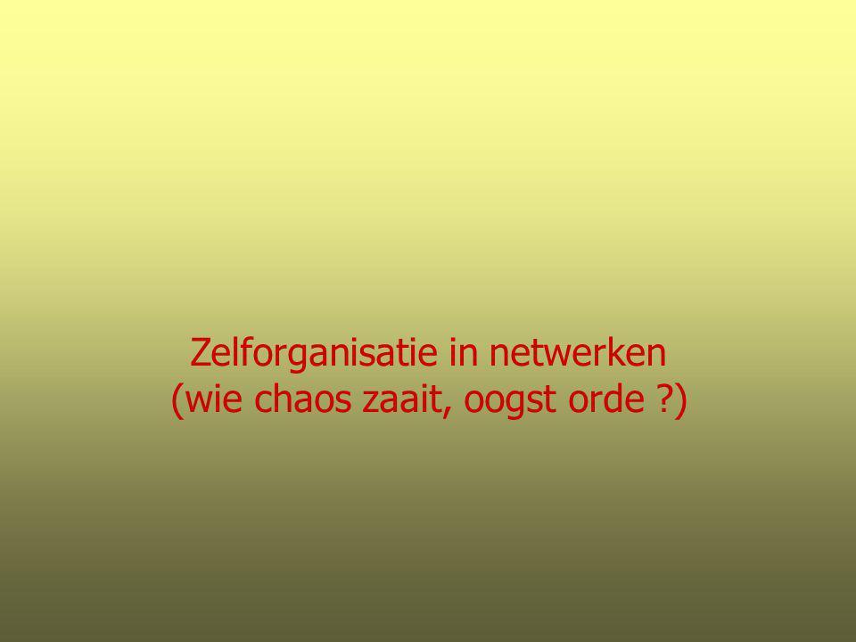 Zelforganisatie in netwerken (wie chaos zaait, oogst orde ?)