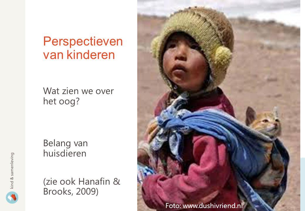 Perspectieven van kinderen Wat zien we over het oog.
