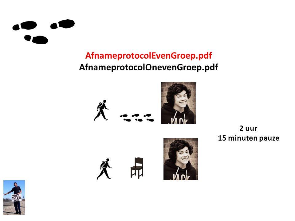 AfnameprotocolEvenGroep.pdf AfnameprotocolOnevenGroep.pdf 2 uur 15 minuten pauze