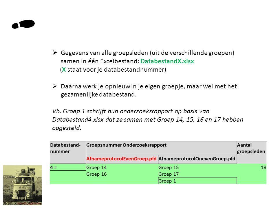  Gegevens van alle groepsleden (uit de verschillende groepen) samen in één Excelbestand: DatabestandX.xlsx (X staat voor je databestandnummer)  Daarna werk je opnieuw in je eigen groepje, maar wel met het gezamenlijke databestand.