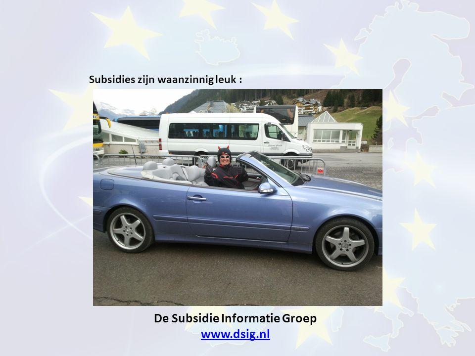 De Subsidie Informatie Groep www.dsig.nl www.dsig.nl Subsidies zijn waanzinnig leuk :