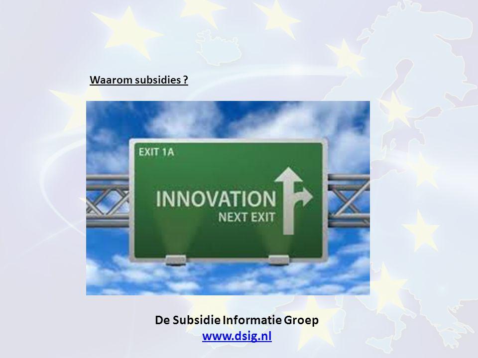 De Subsidie Informatie Groep www.dsig.nl www.dsig.nl Wie komen in aanmerking voor subsidies ?