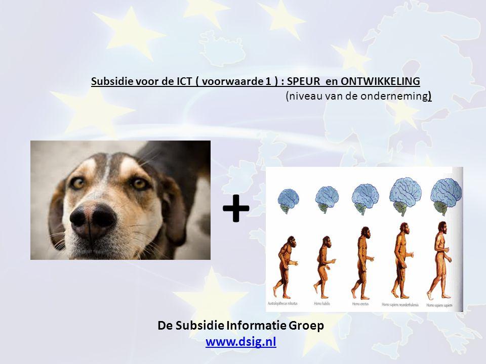 De Subsidie Informatie Groep www.dsig.nl www.dsig.nl Subsidie voor de ICT ( voorwaarde 1 ) : SPEUR en ONTWIKKELING (niveau van de onderneming) +