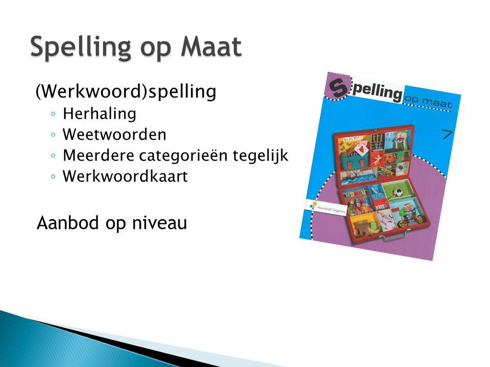 (Werkwoord)spelling ◦ Herhaling ◦ Weetwoorden ◦ Meerdere categorieën tegelijk ◦ Werkwoordkaart Aanbod op niveau
